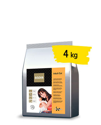 adult-cat-4-portfolio-ticinese-petfood