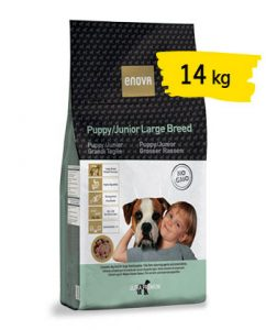 puppy-large-breed-14-portfolio-ticinese-petfood