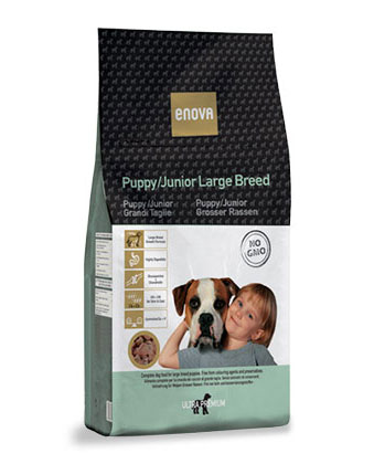 puppy-large-breed Enova