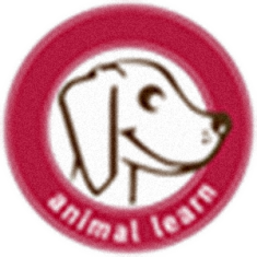 animal-learn