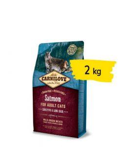 cat-salmon-2-portfolio-ticinese-petfood
