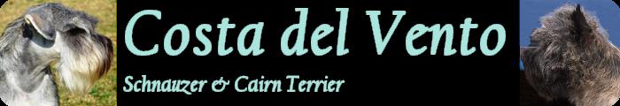 logo2014c