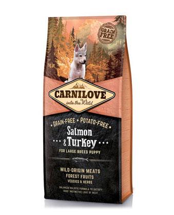 salmon-turkey-large-anteprima